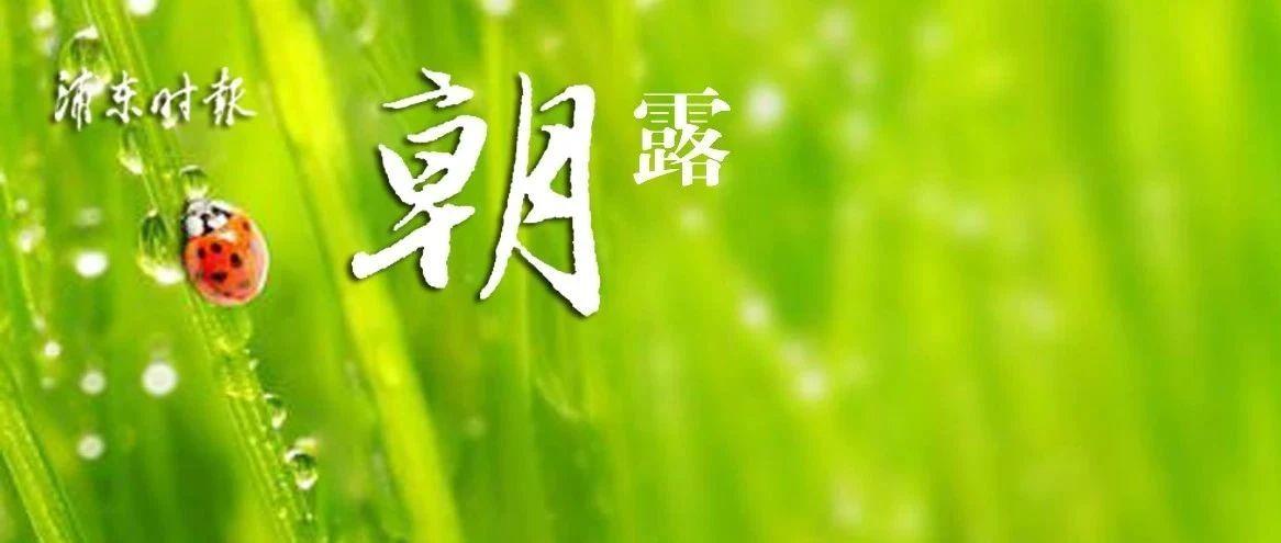 """上海版""""新基建""""方案发布!临港新增3万平方米免税店!上海公布高考志愿填报办法!迪士尼门票八点开售!"""