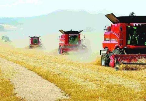 专家说用联合收割机收小麦污染环境,农民该怎么办?