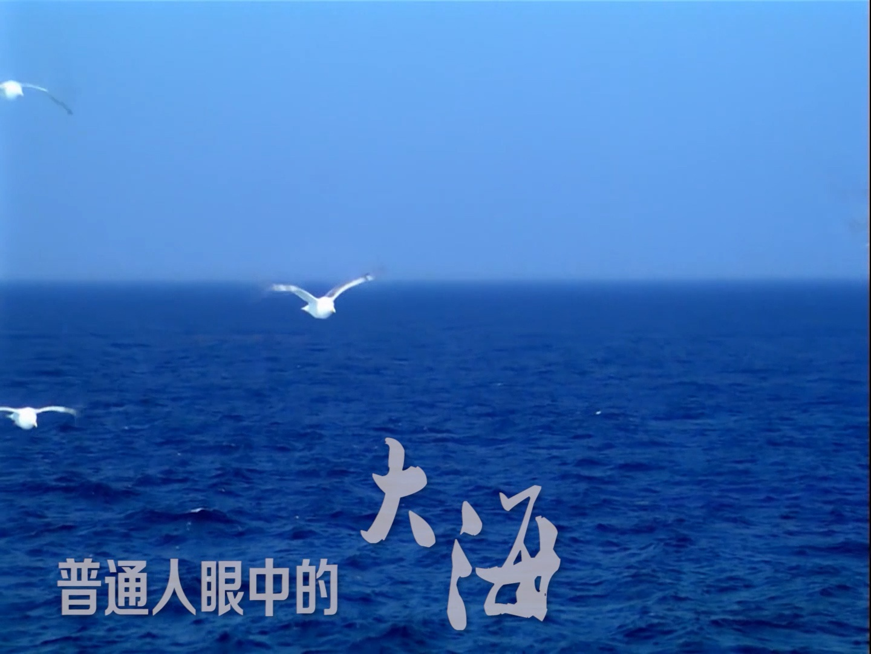 防灾减灾日公益片|致敬 中国救捞人