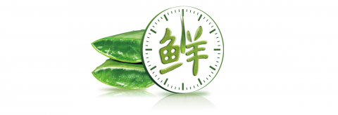"""""""荟""""聚匠心,瑷露德玛着力打造芦荟生活馆"""