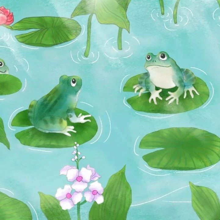 龙江夜读 | 蛙鸣处处