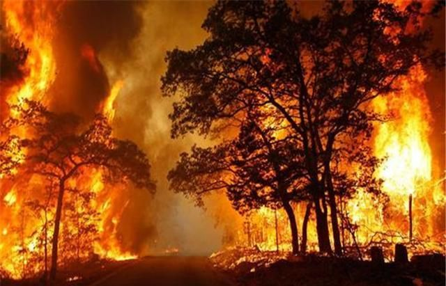 那年夏天发生了什么?热死了上万人,科学家:不是温室气体!