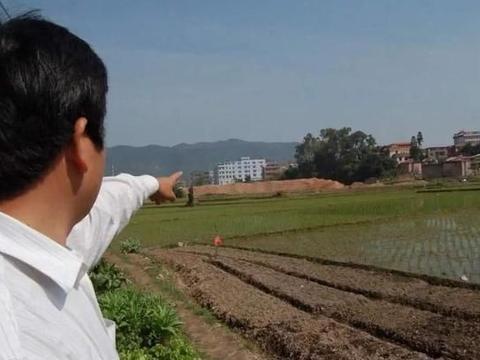 种植大户纷纷跑路,农村出现退租潮,种地赚钱行不通了吗