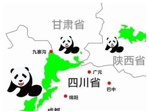 短篇杂谈:大熊猫是如何征服国人,成为国宝的