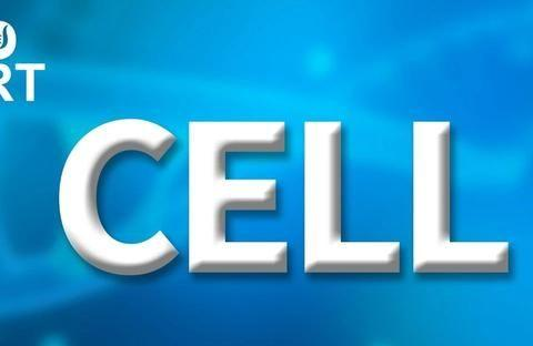 "Cell|发现新""瘦""基因:ALK调控交感神经抵抗体重增加"