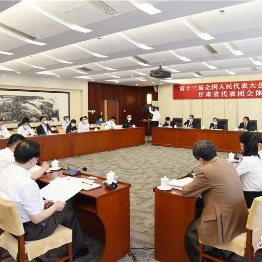 甘肃代表团审议政府工作报告 林铎唐仁健发言