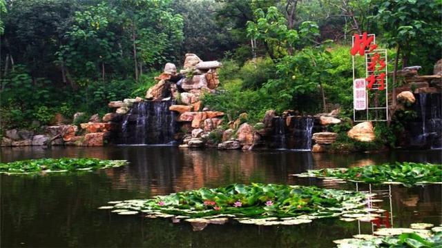 山东最美的古村之一,家家户户都生活在竹林中,宛如世外桃源