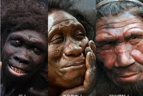 白种人、黄种人和黑种人之间,为何没有生殖隔离呢?