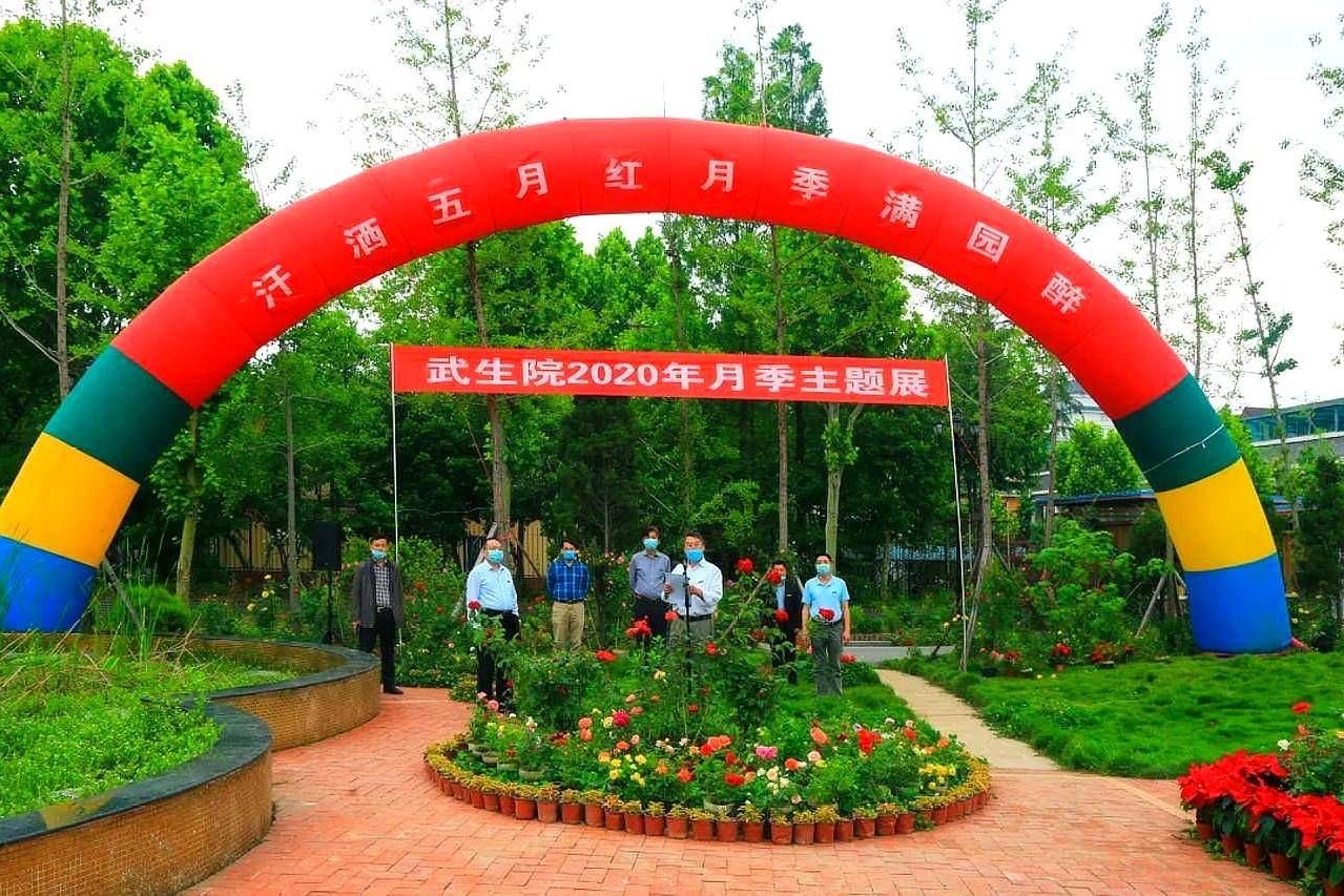 武汉生物工程学院,举行云上月季主题展,130万网友观看