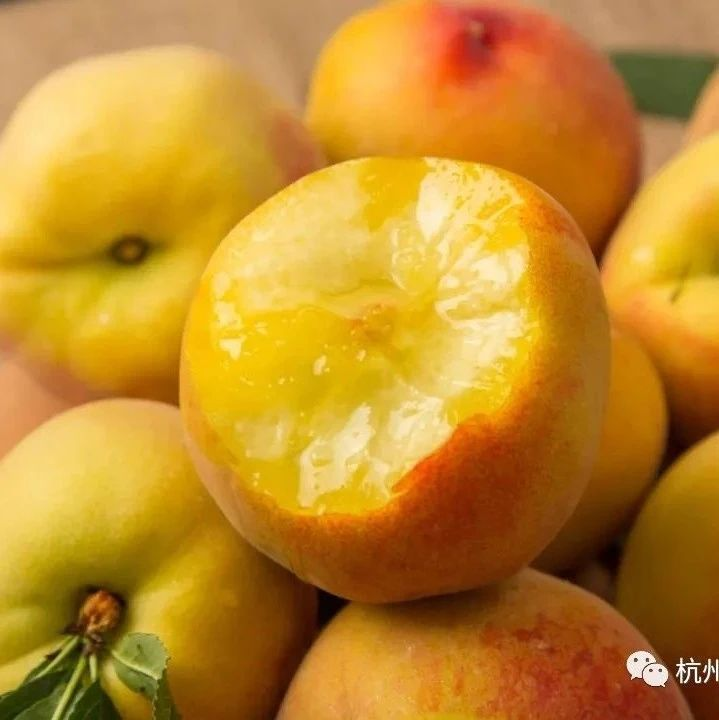 今日福利  新鲜正当季,砀山黄桃入口脆甜爆汁!山东大樱桃,比进口车厘子便宜1倍,爽脆!