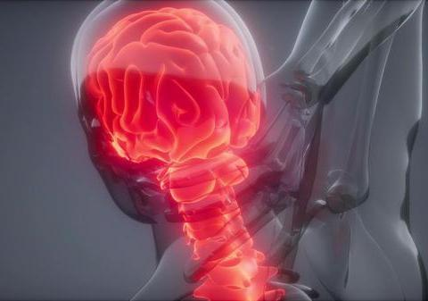 """预防脑梗塞,晚上坚持""""两多三少"""",血管才会好,远离脑梗塞"""
