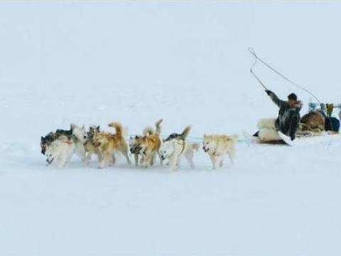 生活在北极圈内的部落,基因和黄种人接近,奇特的习俗让人费解!