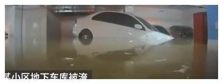 400多辆车被淹地下车库,但其中的一幕让网友:洪水在考驾照!