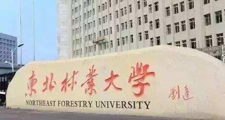 北方地区全国性大学,东北林业大学和天津工业大学