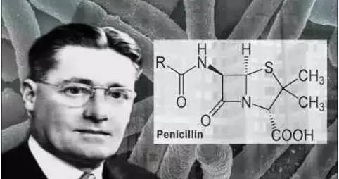 医学史上的5月25日:霍华德·弗洛里首做青霉素动物试验