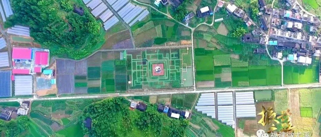 热门景点、乡野特色农家乐……尤溪这个村,人气旺!