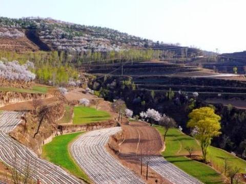 黄土高原竟然是大风刮来的,秦汉时期毁林开荒导致水土流失加剧