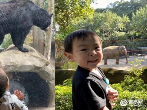 台湾清华大学与Facebook再度攻破3D照片技术