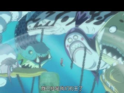 《海贼王》:世界政府废除七武海制度的背后究竟有何考量?