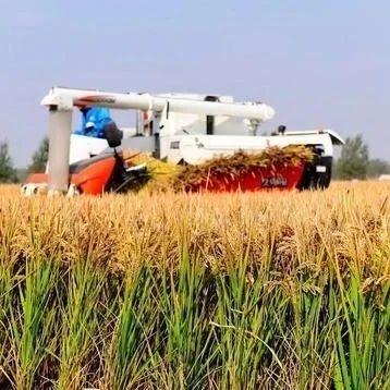 铁岭以工业化市场化理念助推农业发展