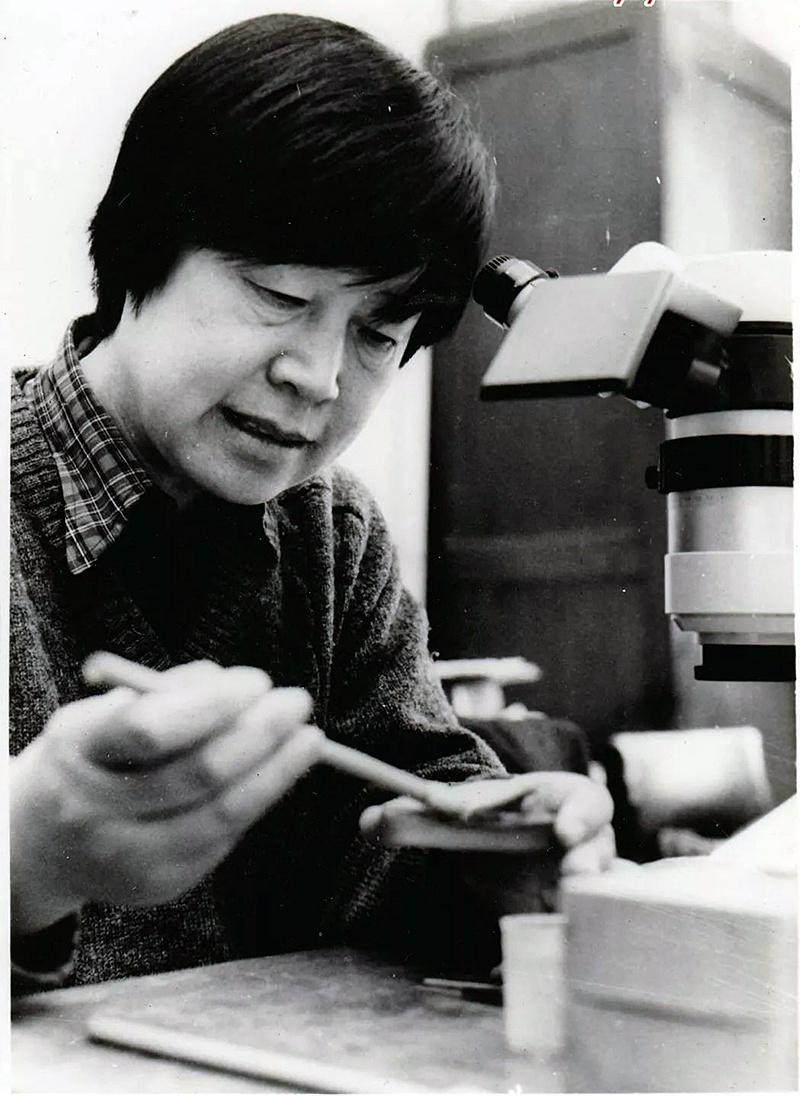 """张弥曼:""""最孤独""""专业的杰出女科学家,就业率不是学科评价标准"""