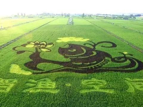 6月6日!银川市首届乡村文化旅游节与您相约贺兰!
