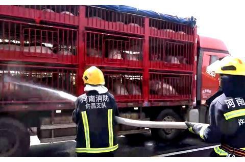 高速路上二师兄缺水险中暑 许昌消防队员紧急送水解燃眉之急
