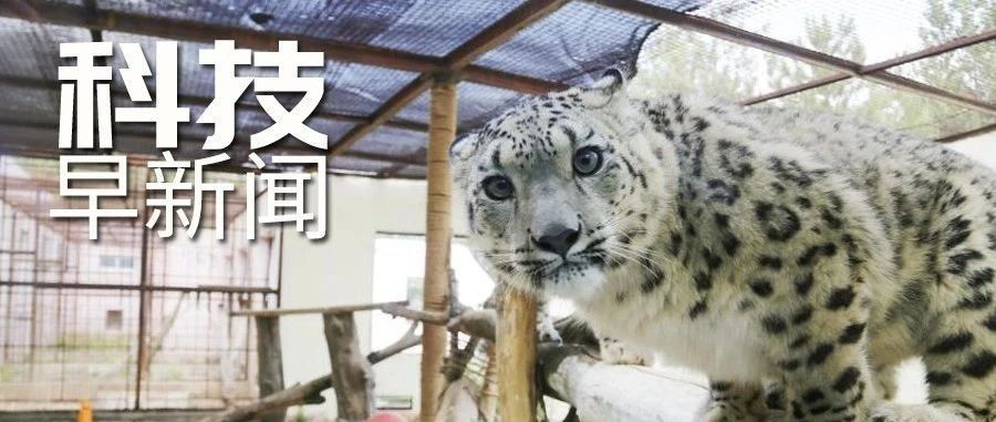 珠峰高程测量登山队成功登顶;日本研发出泪水测乳腺癌技术丨科技早新闻