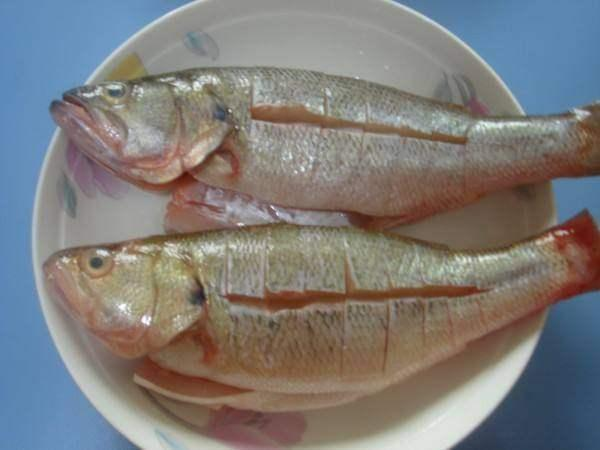 都说广州人蒸的鱼更鲜美,有1个超简单的小窍门,学会你也能做