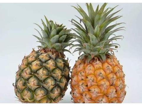 凤梨跟菠萝是同一种水果吗?水果摊贩:就怕遇见不懂装懂的人瞎说