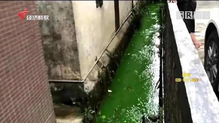 东莞发现偷排!染料染绿河水令人作呕,生态环境局迅速查处