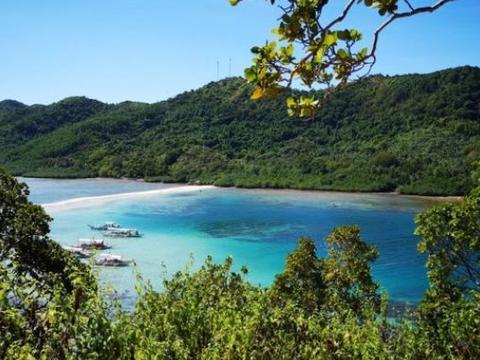 我国唯一的蛇岛,2万多条毒蛇栖息在这里,饮水却要人工送
