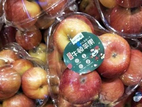 百果园公司招牌牛顿苹果上市不套袋40年老树结果