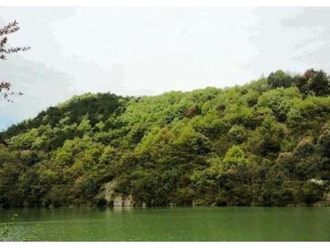 芜湖口碑最好的公园,4A景区却没门票,有机会一定要去看看