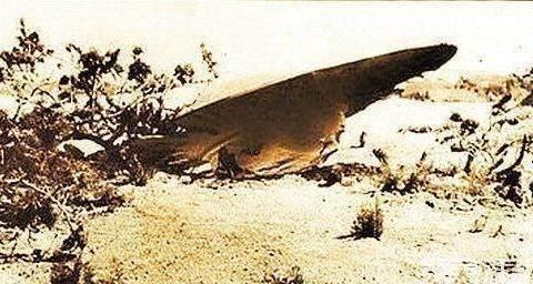 """飞碟坠落在郊区,联合调查组发现14具""""尸体"""""""