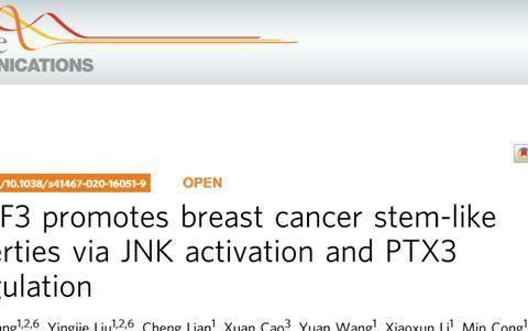 中国科学院报道乳腺癌干细胞的诊断和治疗策略