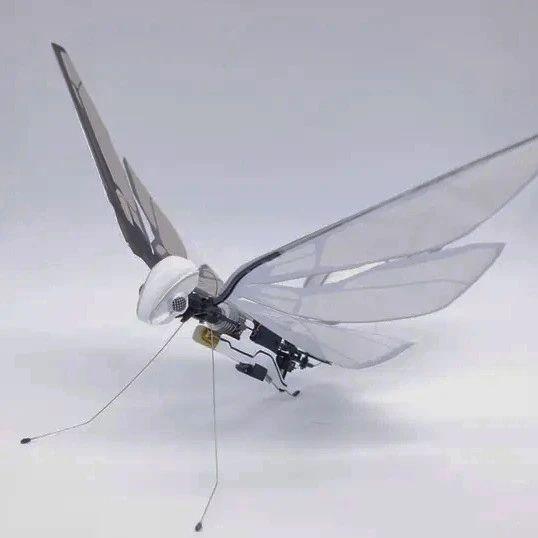 法国航空工程师打造的仿生昆虫,震动翅膀就能飞上天空