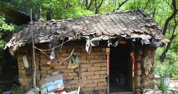 父子三人为降低生活开销,逃回深山住窝棚,孩子上学前卖3只鸡