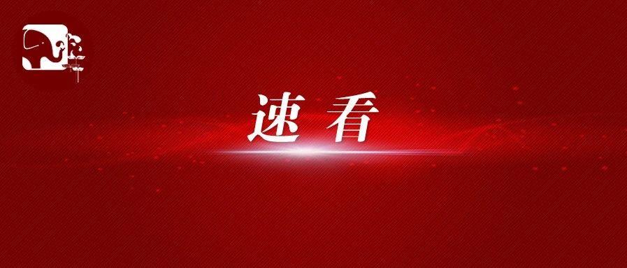 河南省2020年普通高校招生艺术省统考音乐(含对口、专升本)、舞蹈类成绩公布