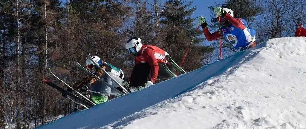 《冰雪知识微课堂》杜金伦:自由式滑雪障碍追逐项目夏季如何训练