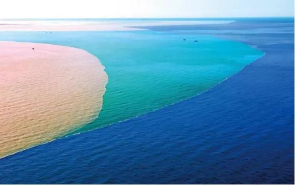 为什么渤海水和黄河水不相融,专家揭秘无非就这两个原因,太神奇