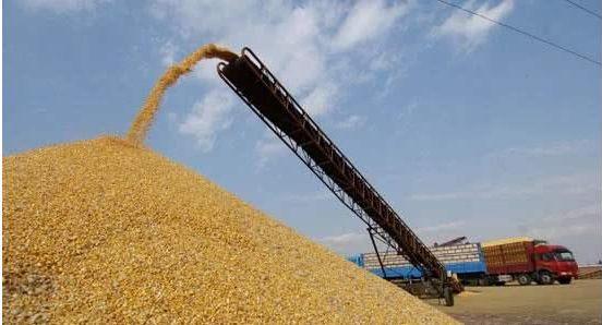 粮油储备充足,为何超市的米面价格却还上涨了?看完心里有底了