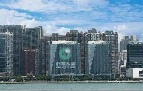中国人寿海外公司积极推进国际化高质量发展