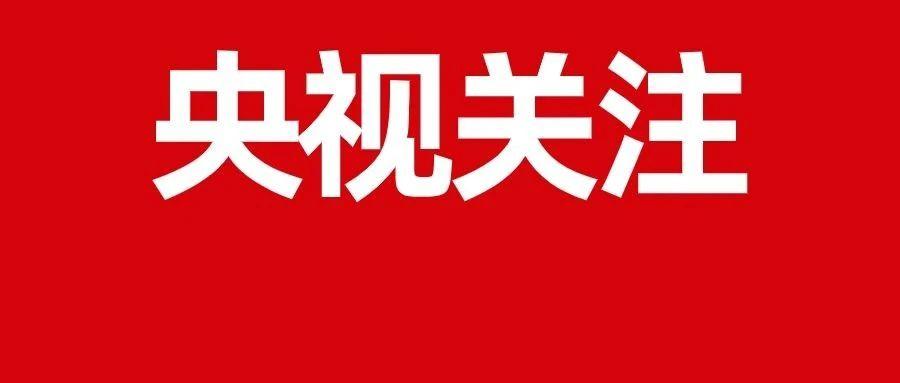 阜阳再上央视《新闻联播》!