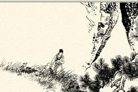民间故事:小黑熊求郎中医母,赠送一张狼王皮,扇了他儿子一掌