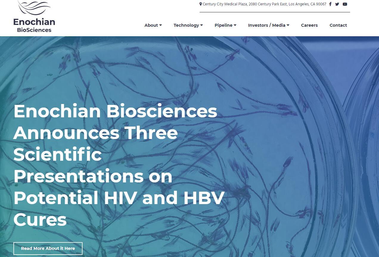 乙肝在研新药ENOB-HB-01,97%受感染细胞凋亡,不损伤正常细胞