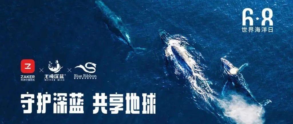 世界海洋日:ZAKER牵手无境深蓝、蓝丝带共同守护深蓝