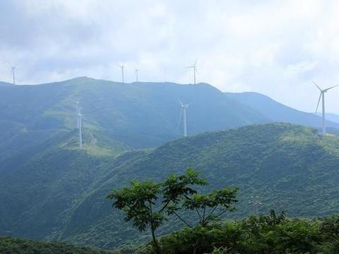 宁波八条风车公路之东海云顶,花开路两旁,又一条美丽公路
