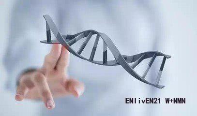 扒一扒:长寿药NMN骗 局,NMN的作用还是骗人的吗?