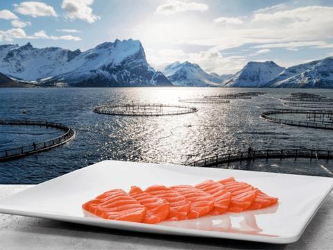 欧洲主要三文鱼供应商股价下跌,对员工进行检测,无人患新冠肺炎